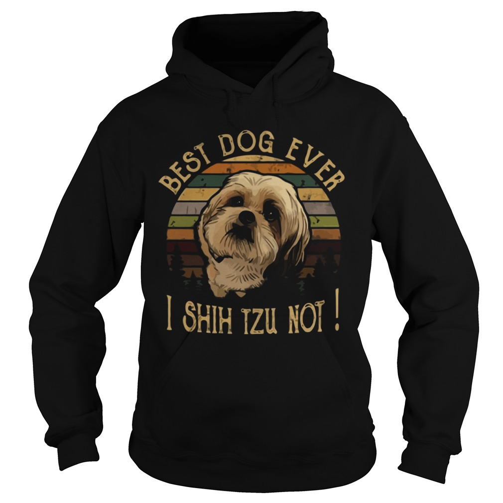 The Sunset Best Dog Ever I Shih Tzu Not Hoodie