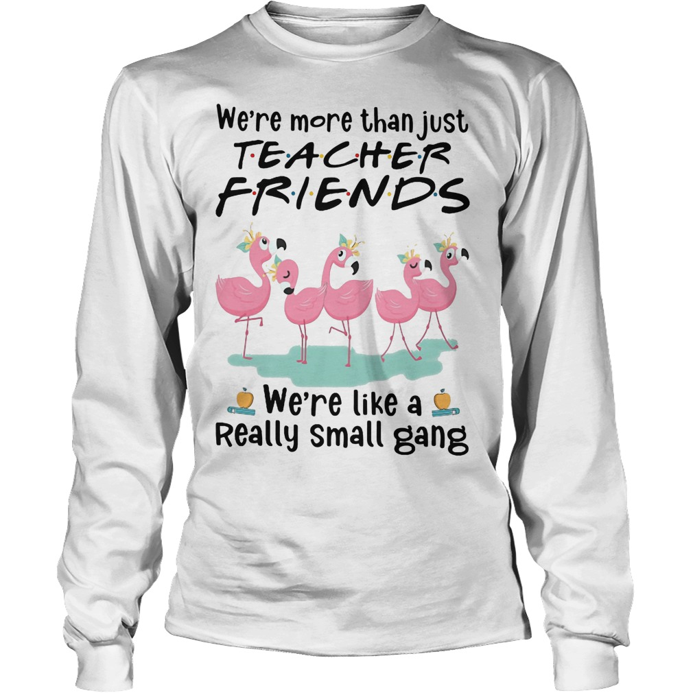 Flamingo We're More Than Just Teacher Friends We're Like A Really Small Gang Longsleeve Tee
