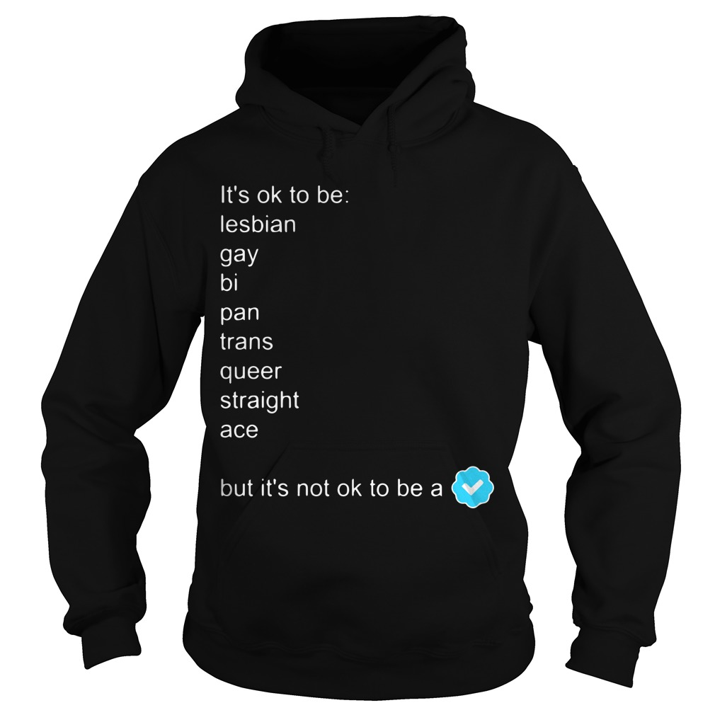 It's Ok To Be Lesbian Gay Bi Pan Trans Queer Straight Ace But It's Not Ok To Be A Hoodie