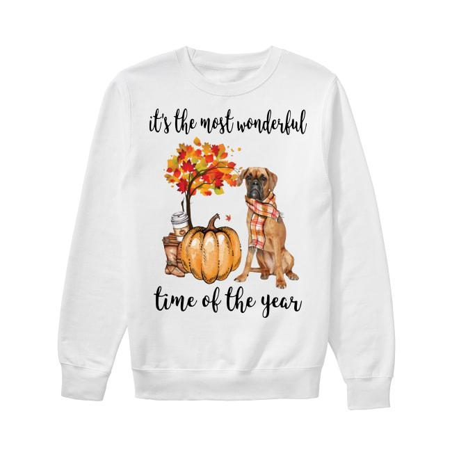 Boxer It's The Most Wonderful Time Of The Year Sweater