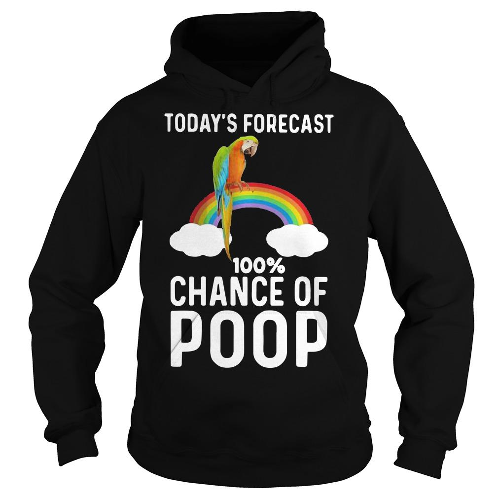 Rainbow Today's Forecast 100 Percent Chance Of Poop Hoodie