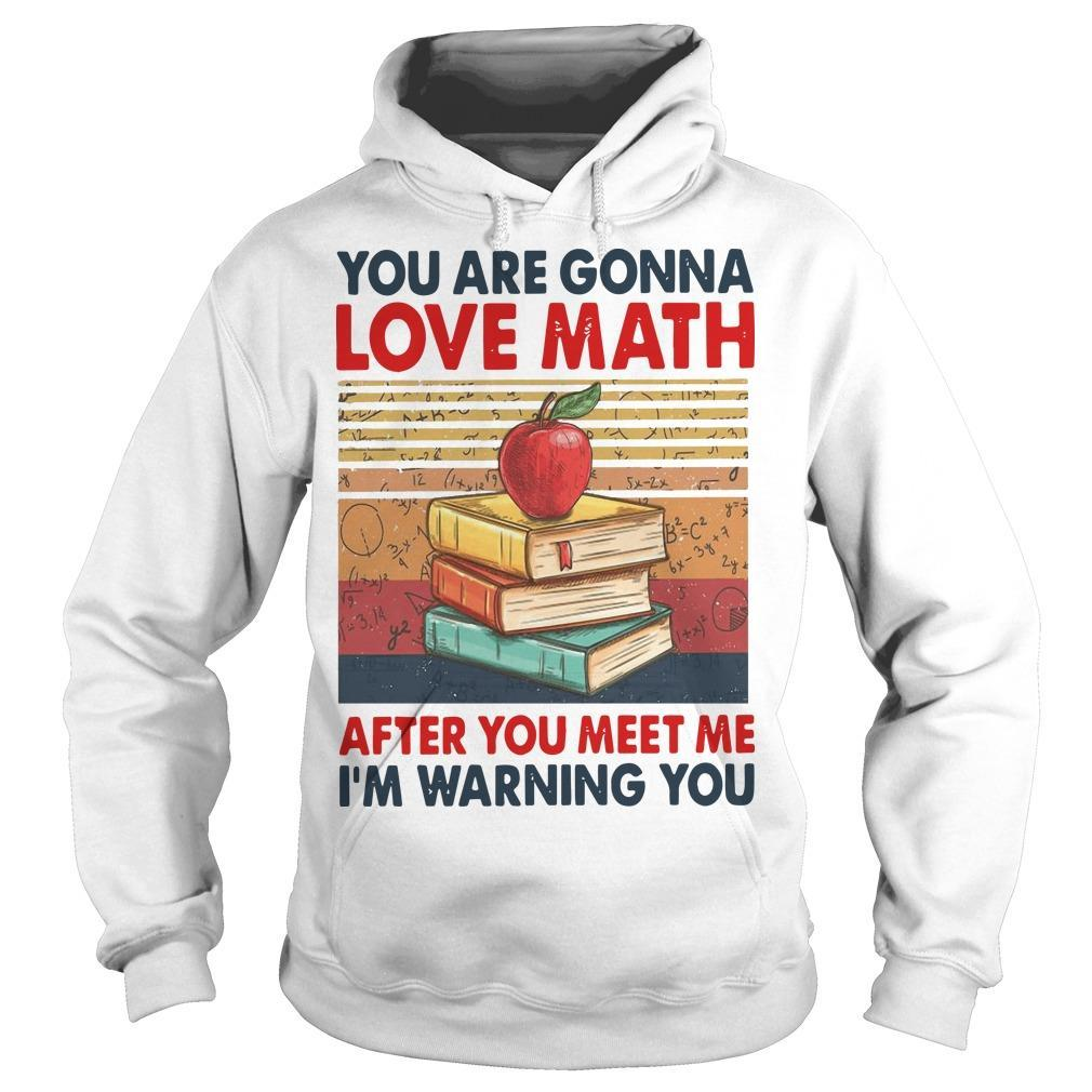 Vintage You Are Gonna Love Math After You Meet Me I'm Warning You Hoodie