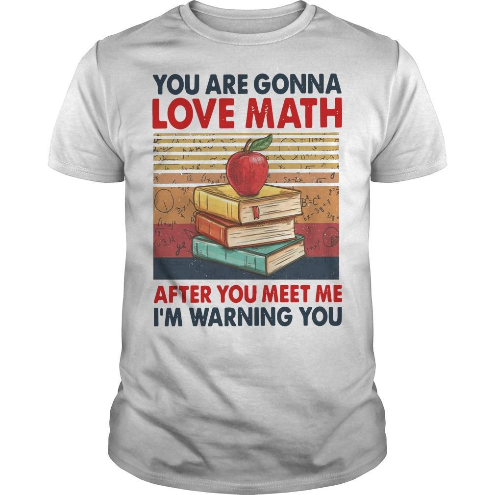 Vintage You Are Gonna Love Math After You Meet Me I'm Warning You Shirt