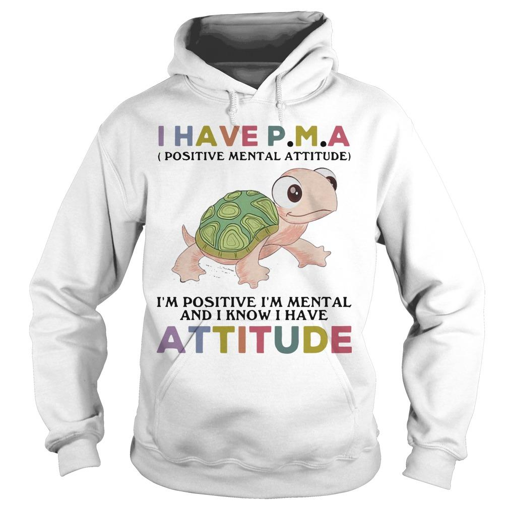 Turtle I Have Pma I'm Positive I'm Mental And I Know I Have Attitude Hoodie