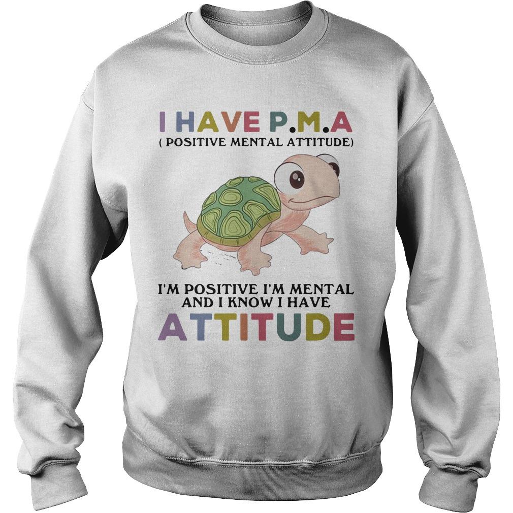 Turtle I Have Pma I'm Positive I'm Mental And I Know I Have Attitude Sweater