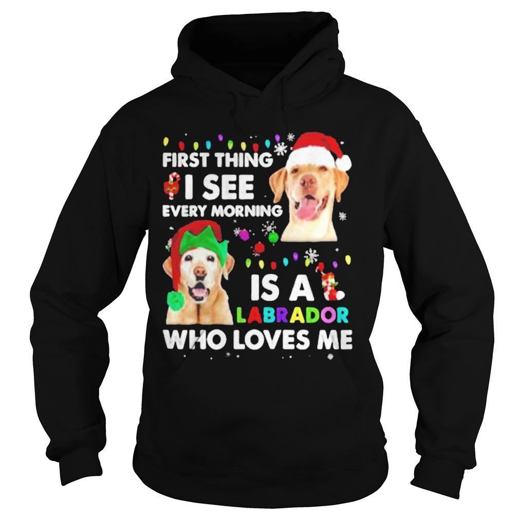 First Thing I See Every Morning Is A Labrador Who Loves Me Hoodie