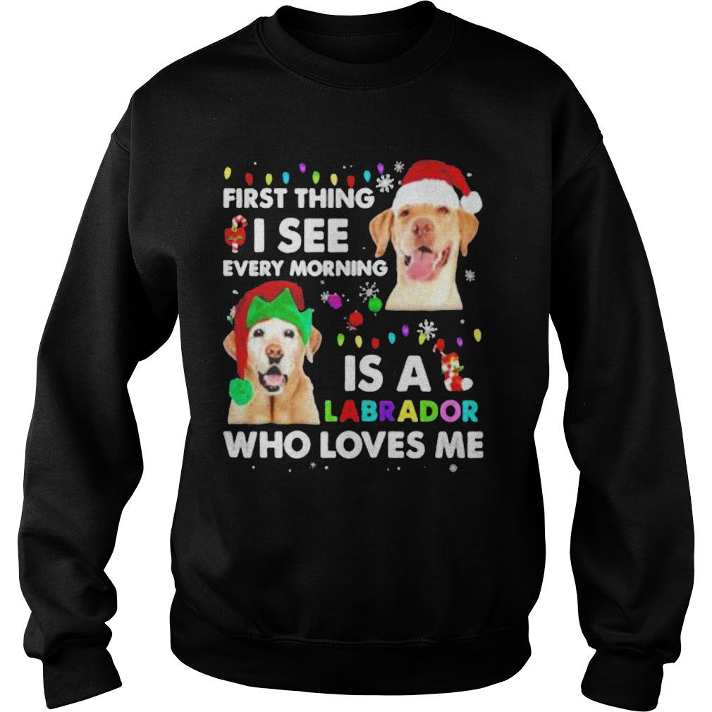 First Thing I See Every Morning Is A Labrador Who Loves Me Sweater