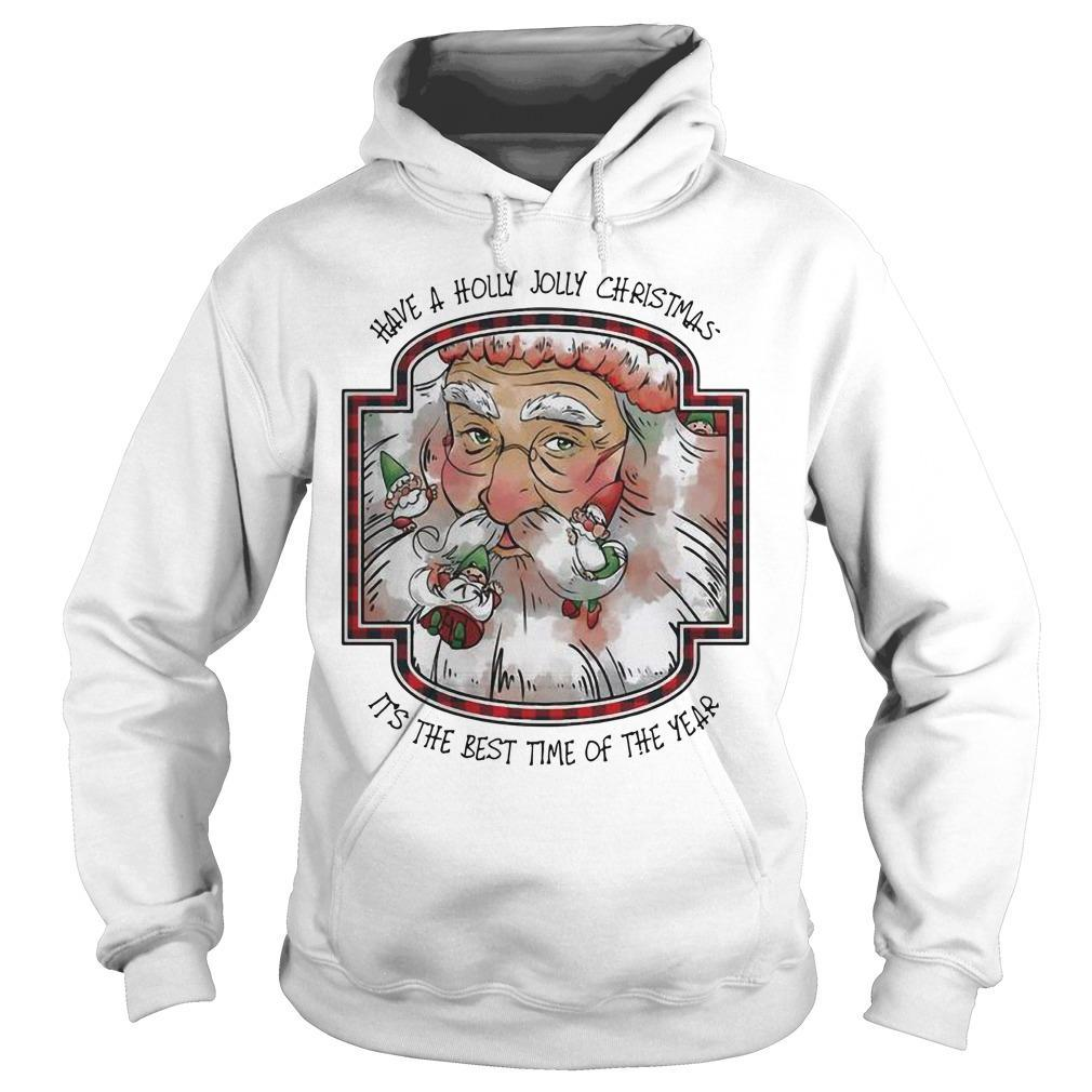 Santa Have A Hooly Jolly Christmas It's The Best Time Of The Year Hoodie