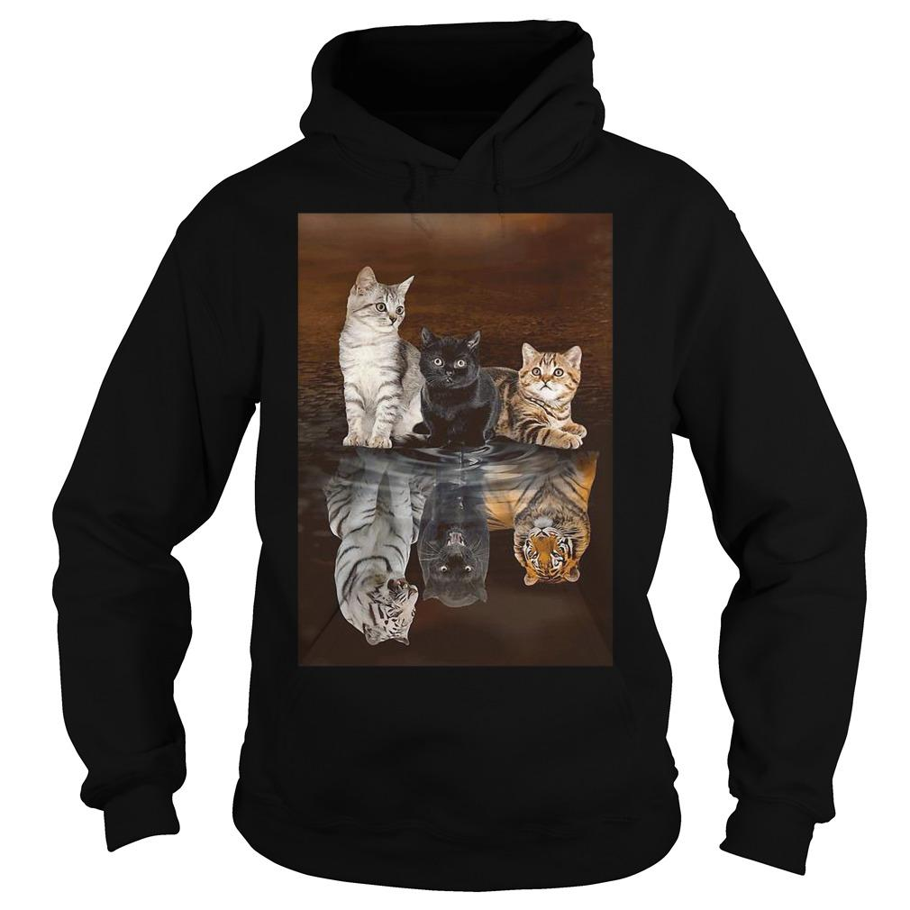 Three Cat Tiger Reflections Hoodie