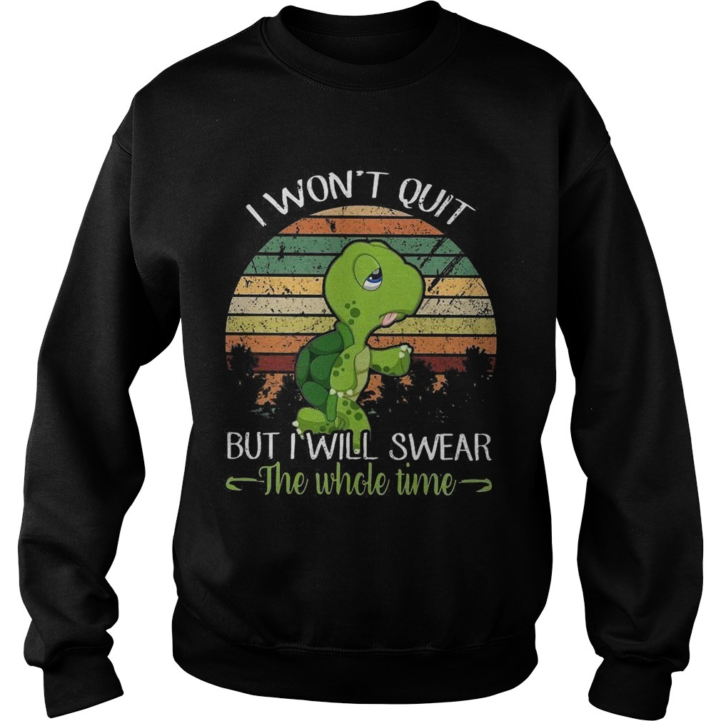 DT ShirtSunset Turtle I Won't Quit But I'll Swear The Whole Time Sweater