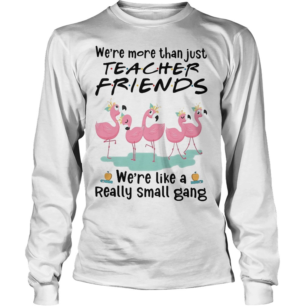 Flamingo We're More Than Just Teacher Friends We're Like A Really Small Gang Long Sleeve Tee