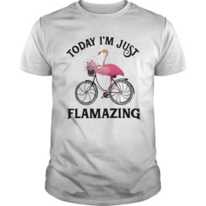 Flamingo Today I'm Just Flamazing Shirt