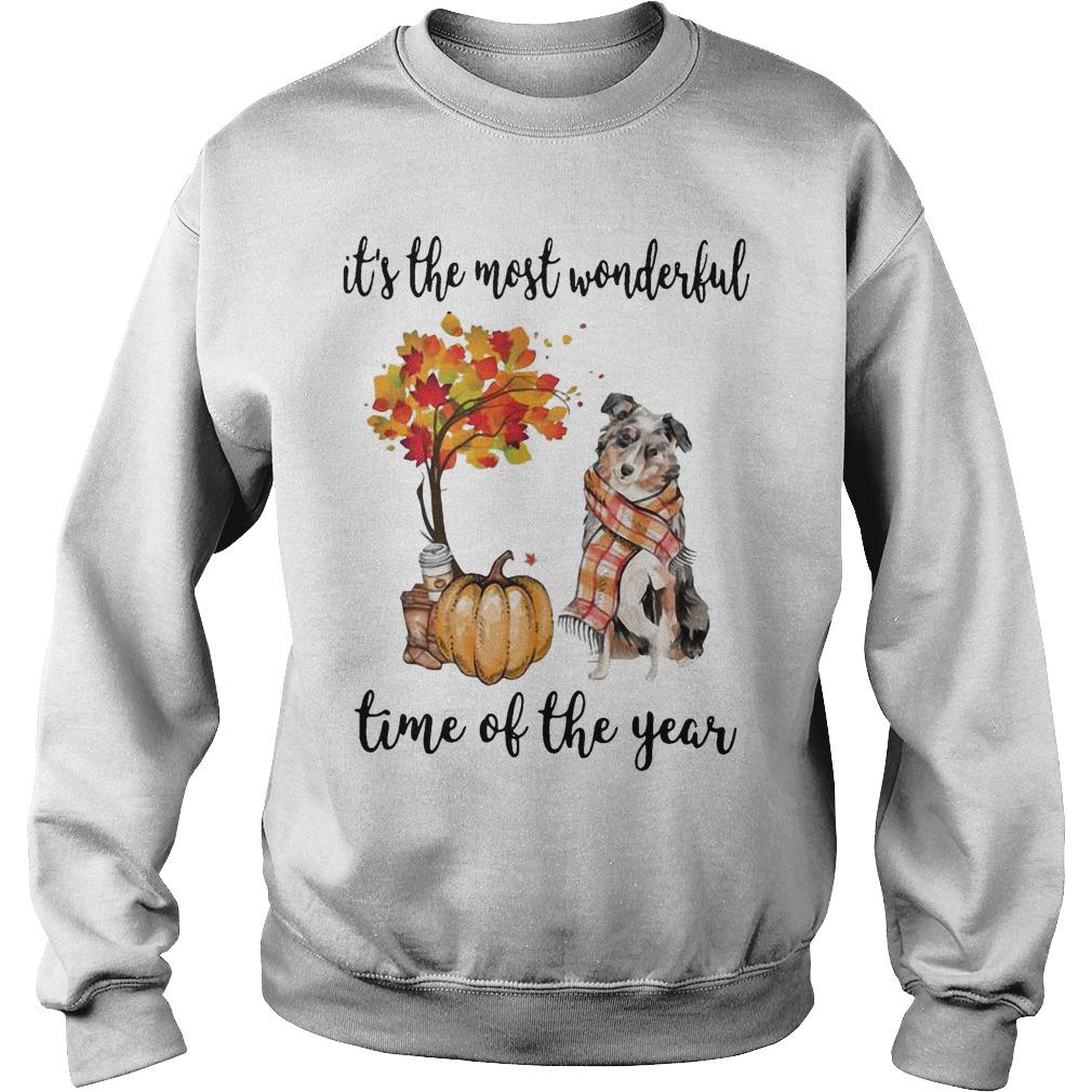 Australian Shepherd It's The Most Wonderful Time Of The Year Sweater