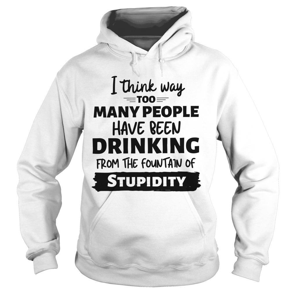 I Think Way Too Many People Have Been Drinking From The Fountain Of Stupidity Hoodie