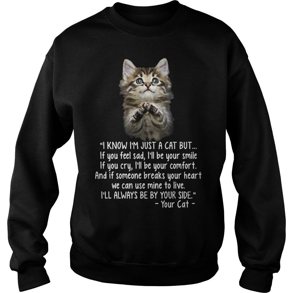 I Know I'm Just A Cat But If You Feel Sad I'll Be Your Smile Sweater