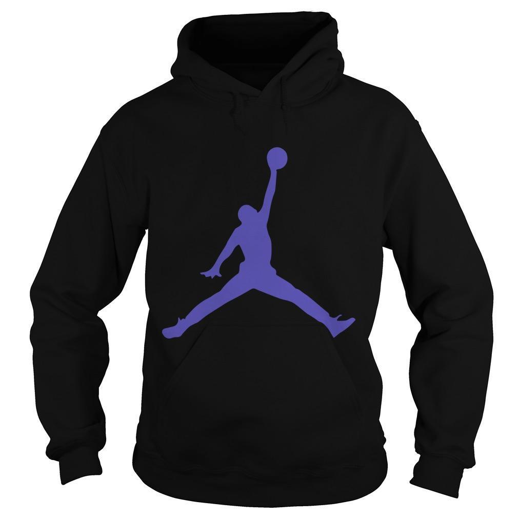 Jordan 12 Dark Concord Hoodie