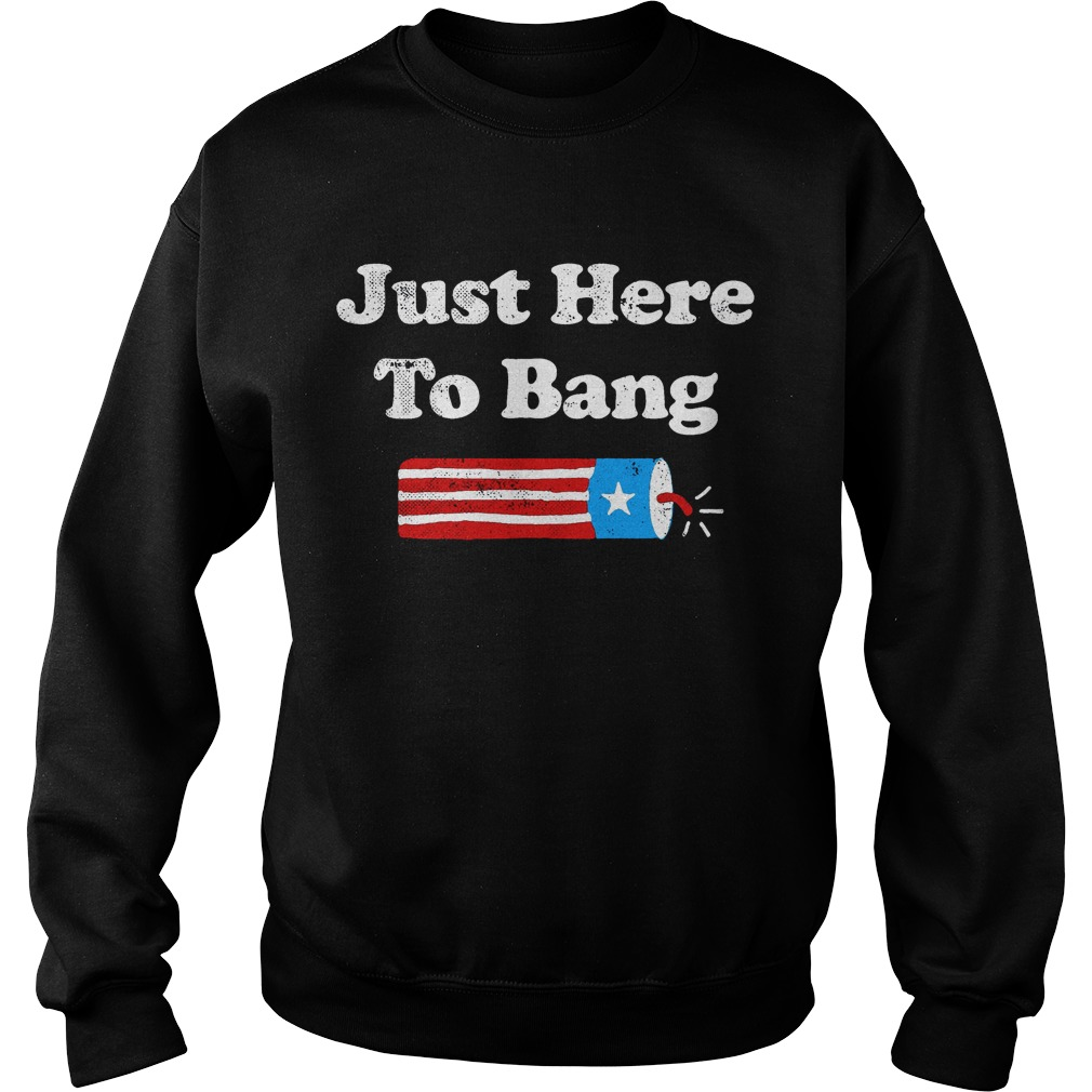 4th Of July Just Here To Bang Sweater