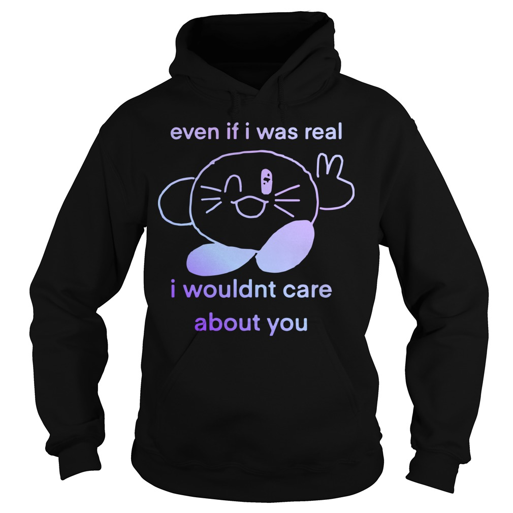 Even If I Was Real I Wouldnt Care About You Hoodie