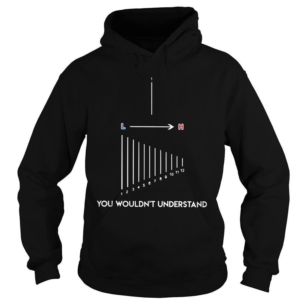 L To H You Wouldn't Understand Hoodie