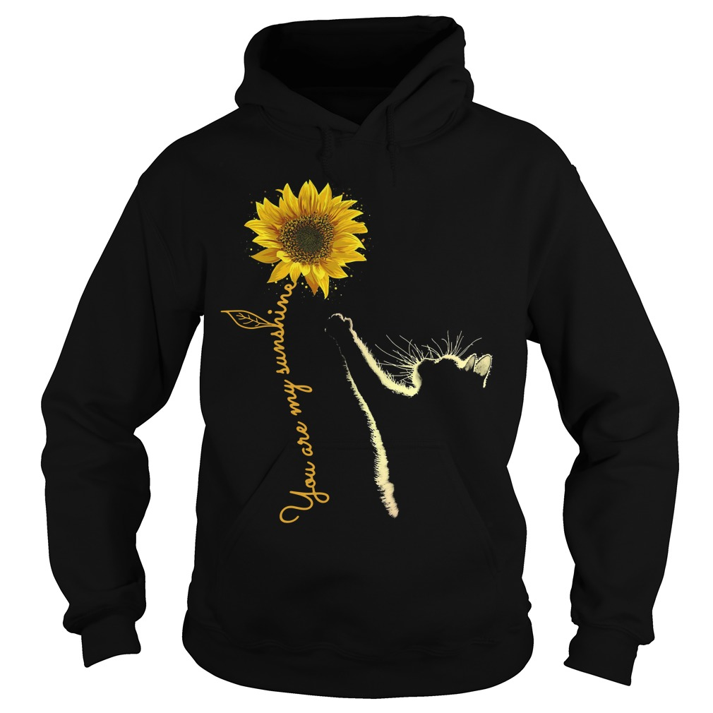 Cat You Are My Sunshine Hoodie