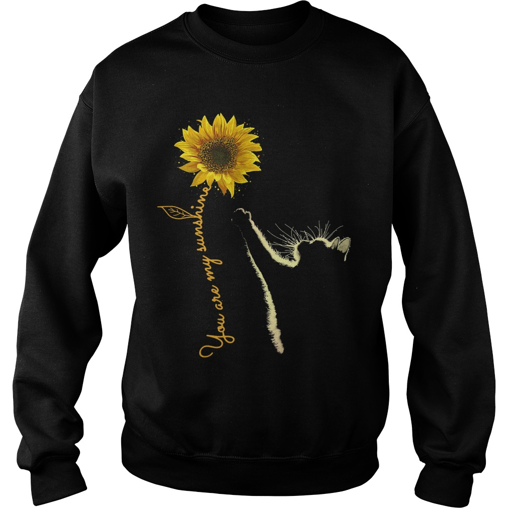 Cat You Are My Sunshine Sweater
