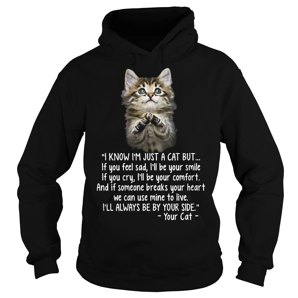 I Know I'm Just A Cat But If You Feel Sad I'll Be Your Smile Hoodie