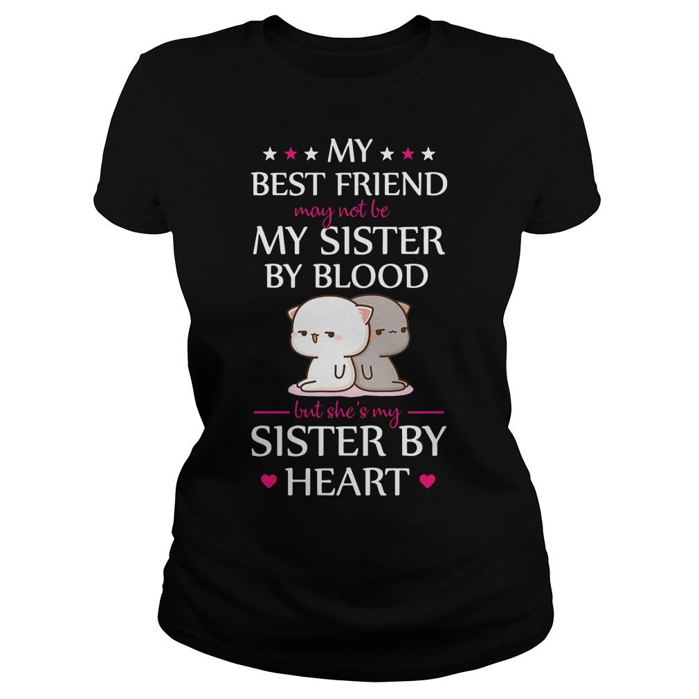 Cat My Best Friend May Not Be My Sister By Blood But She's My Sister By Heart Hoodie