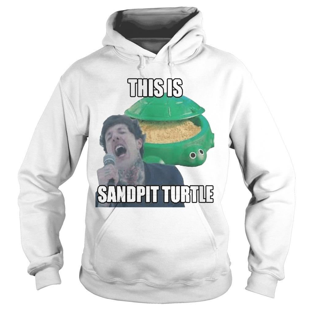 This Is Sandpit Turtle Hoodie