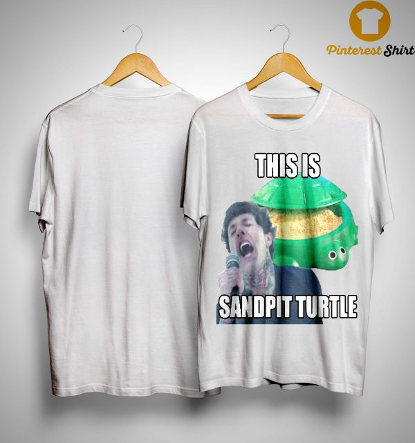 This Is Sandpit Turtle Shirt