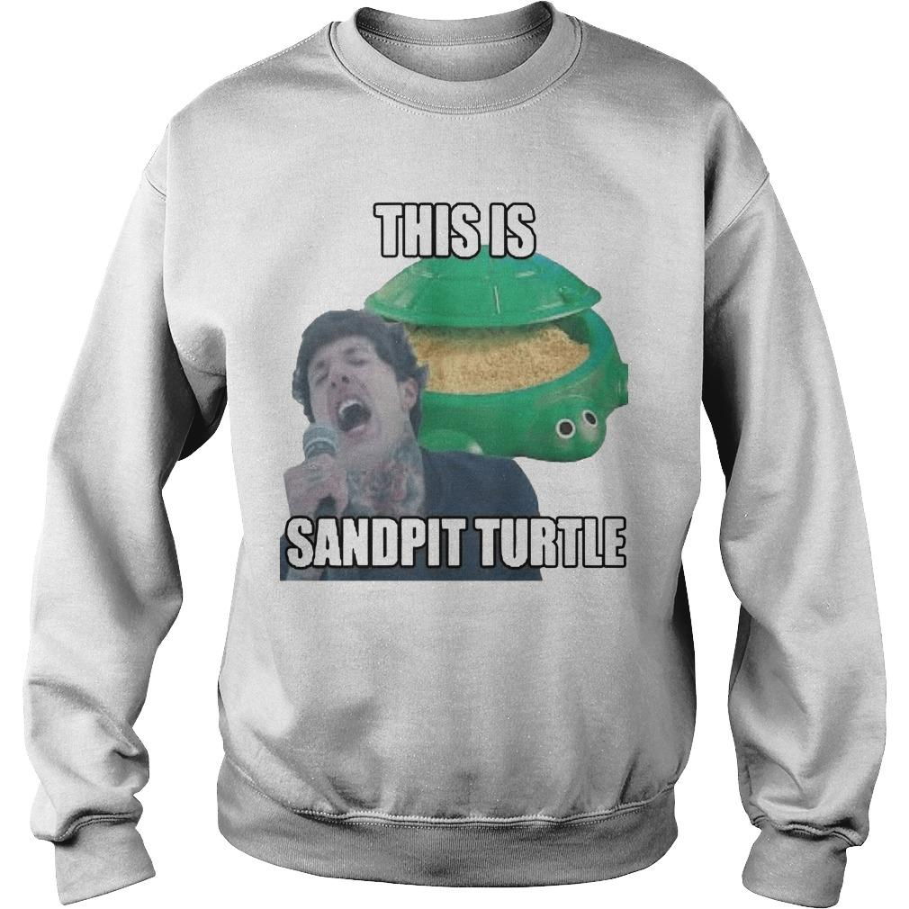 This Is Sandpit Turtle Sweater