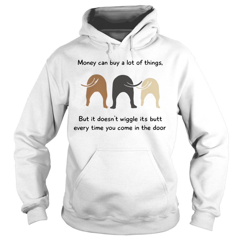 Money Can Buy A Lot Of Things But It Doesn't Wiggle Its Butt Hoodie