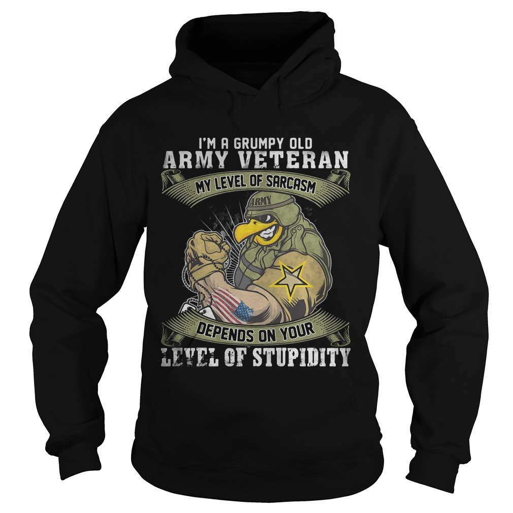 I'm A Grumpy Old Army Veteran My Level Of Sarcasm Depends On Your Level Of Stupidity Hoodie