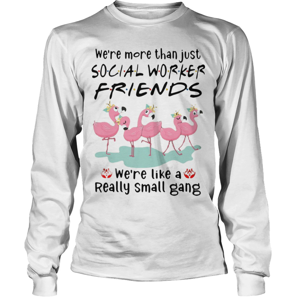 Flamingo We're More Than Just Social Worker Friends We're Like A Really Small Gang Longsleeve Tee