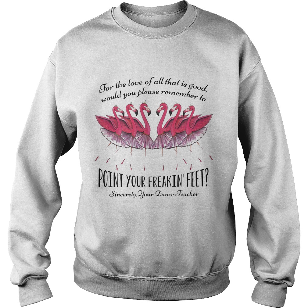 Flamingo For The Love Of All That Is Good Would You Please Remember To Point Your Freakin Feet Sweater