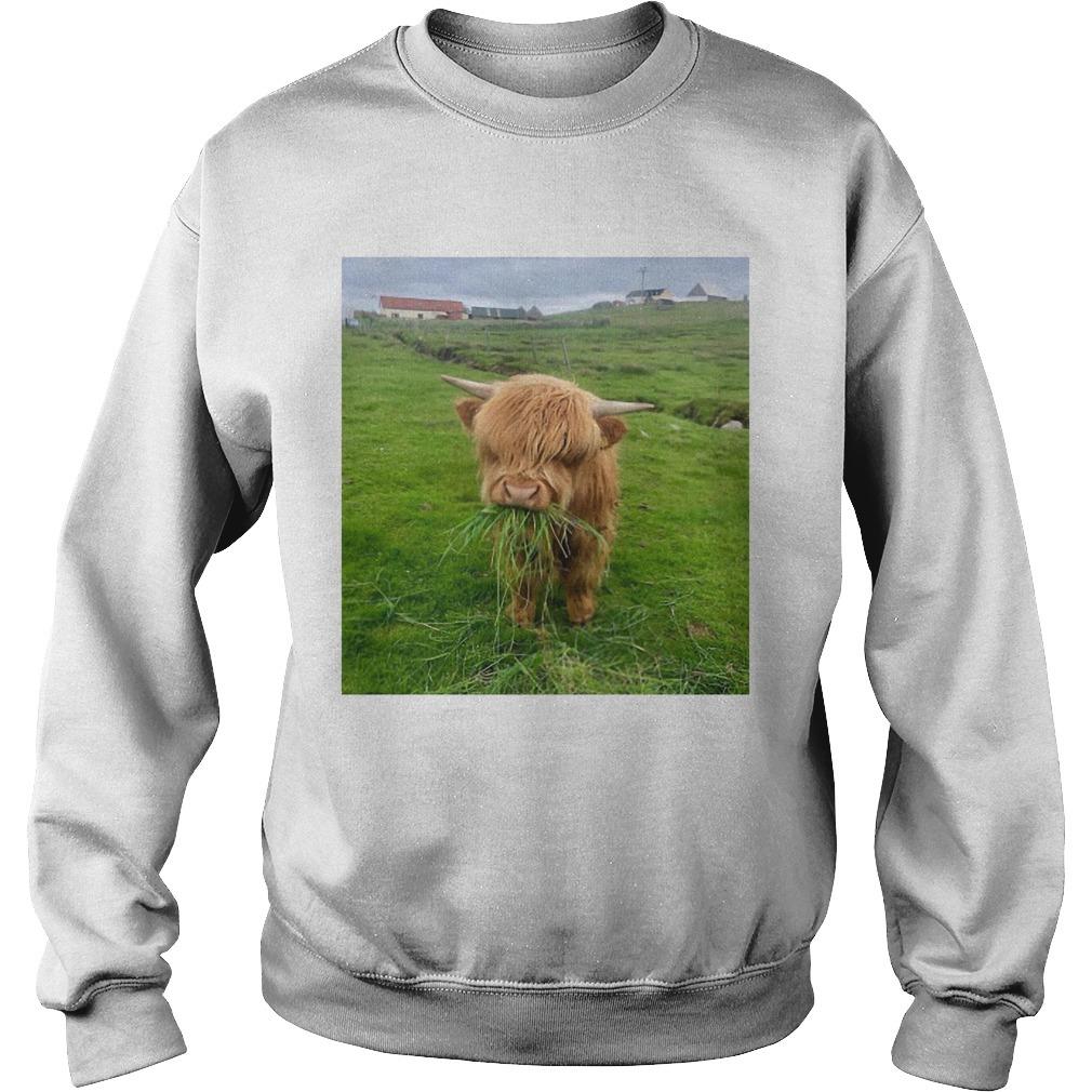 Cute Scottish Highland Cattle Sweater