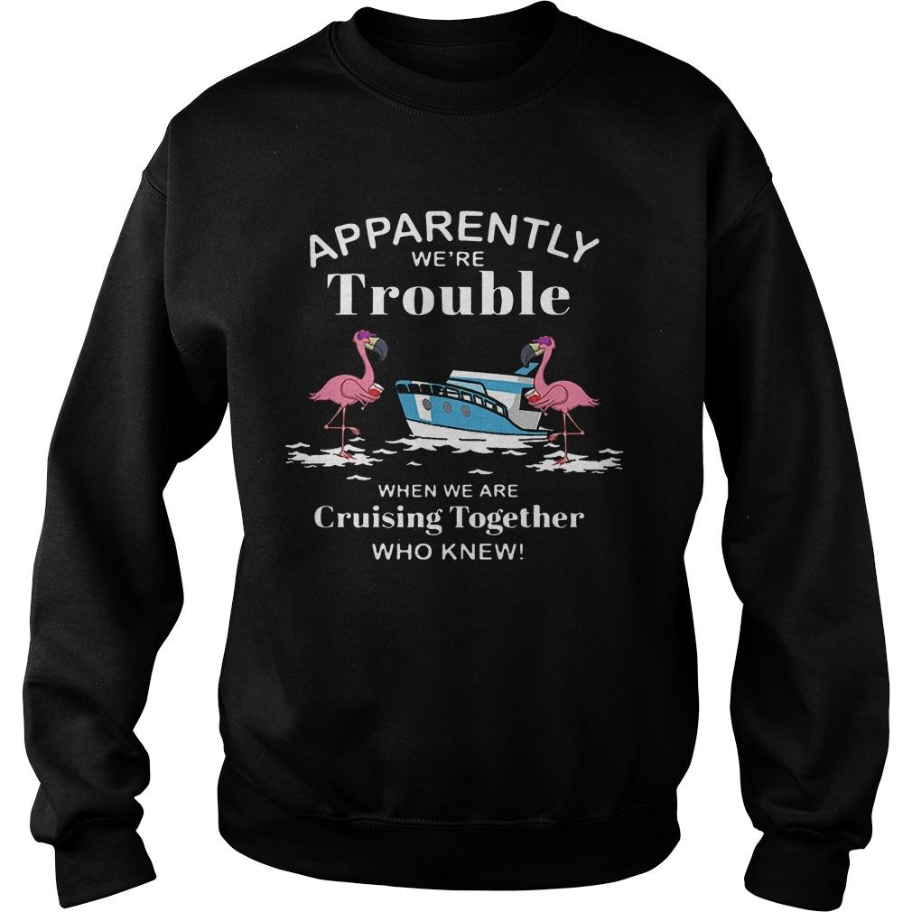 Flamingo Apparently We're Trouble When We Are Cruising Together Who Knew Sweater