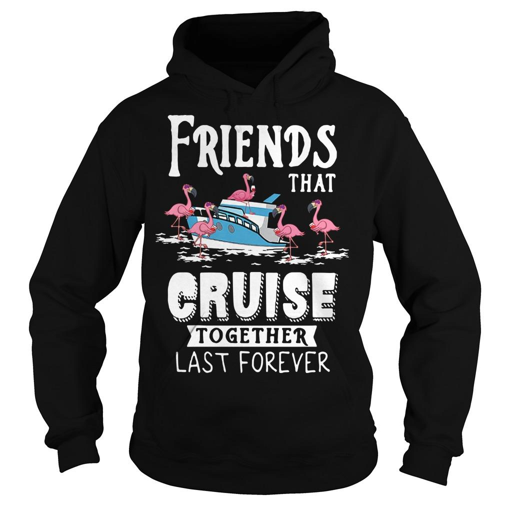 Flamingo Friends That Cruise Together Last Forever Hoodie