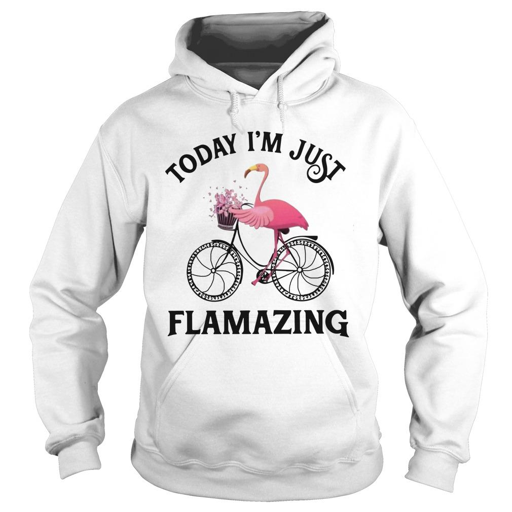 Flamingo Today I'm Just Flamazing Hoodie