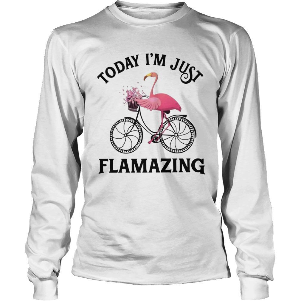 Flamingo Today I'm Just Flamazing Longsleeve