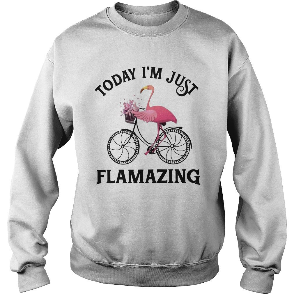 Flamingo Today I'm Just Flamazing Sweater