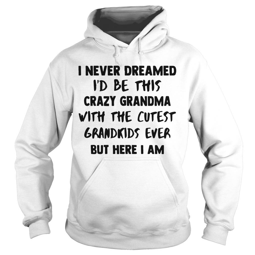 I Never Dreamed I'd Be This Crazy Grandma With The Cutest Grandkids Ever Hoodie