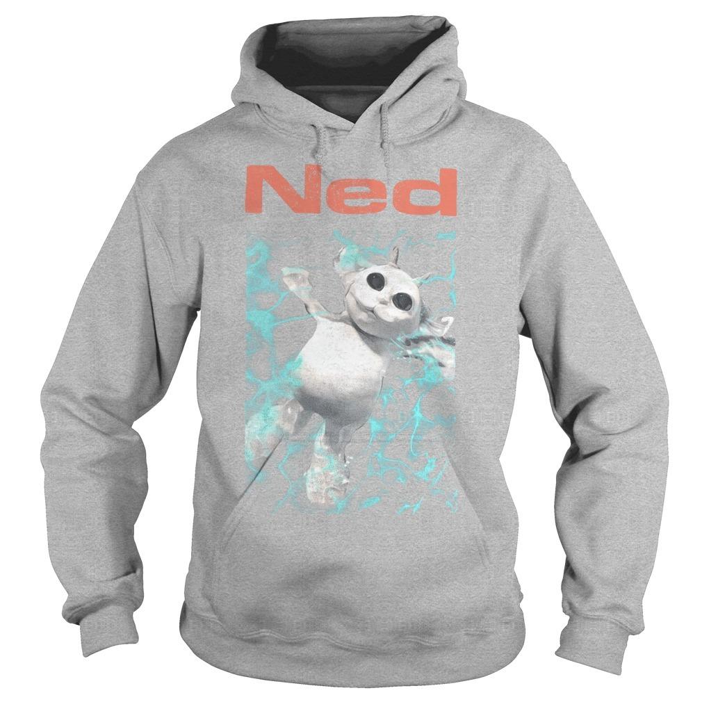 Ned Hoodie