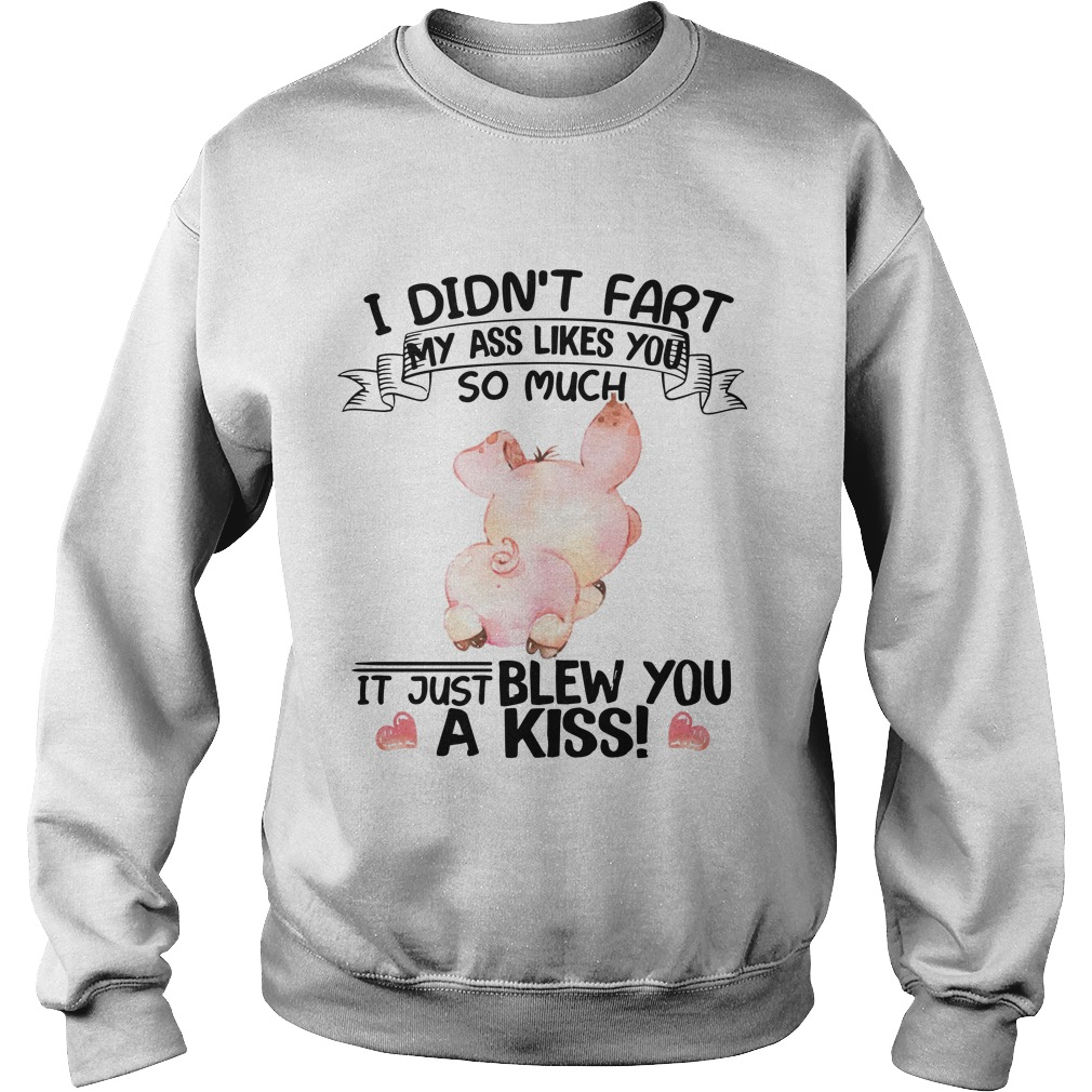 Pig I Didn't Fart My Ass Likes You So Much It Just Blew You A Kiss Sweater