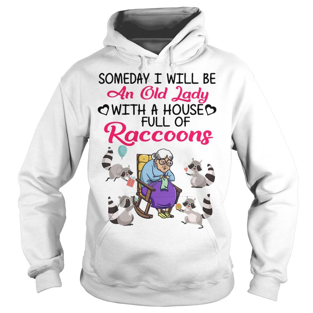 Someday I Will Be An Old Lady With A House Full Of Raccoons Hoodie