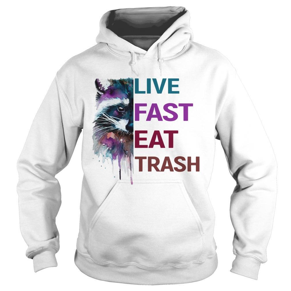Water Color Raccoon Live Fast Eat Trash Hoodie