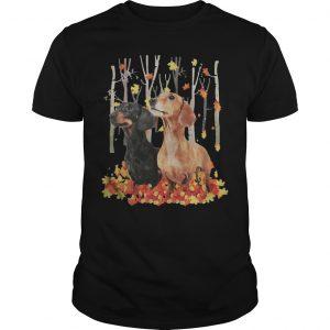 Dachshund Autumn Forest