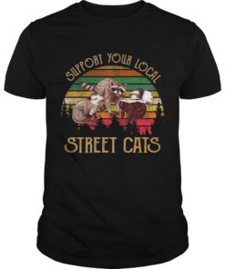 Sunset Vintage Racoon Support Your Local Street Cats