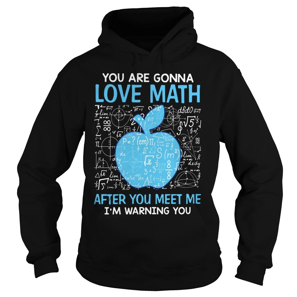 You Are Gonna Love Math After You Meet Me I'm Warning You Hoodie
