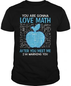 You Are Gonna Love Math After You Meet Me I'm Warning You