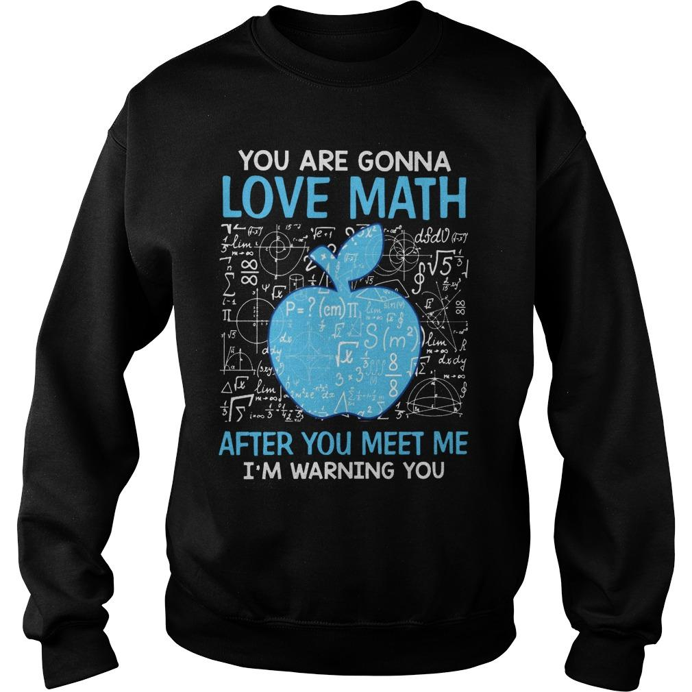 You Are Gonna Love Math After You Meet Me I'm Warning You Sweater